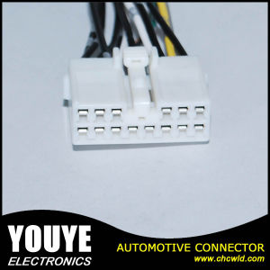 SGS Ts Approved Cables Made 28 Pin Wire Harness/Molex Connector/Jst Connector Cables pictures & photos
