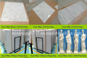Venus White Marble, White Marble, Royal White Marble Slab pictures & photos
