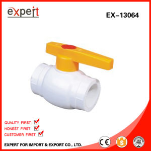 PPR Single Female Threaded Ball Valve with Brass Ball Ex-13064