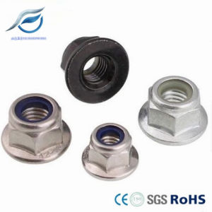 Stainless Steel Hexagon Flange Nylon Lock Nut with Washer pictures & photos