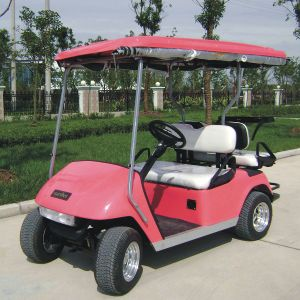 China Marshell Rear Seat Electric Golf Cart with CE (DG-C2+2) pictures & photos