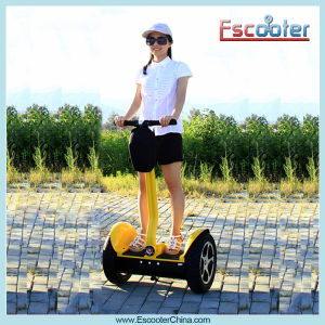 40-60km 2000W Hot Sale Two Wheeled Self-Balancing Personal Transport pictures & photos