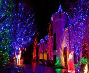 LED Christmas Light Outdoor Christmas Decoration for Market Decoration pictures & photos