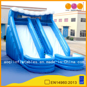 Double Blue Water Slide with Pool for Kid (AQ1075) pictures & photos