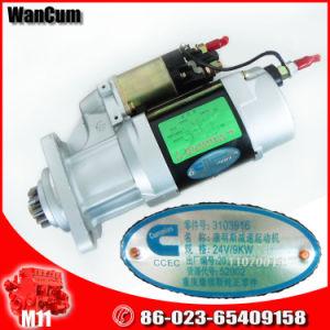 Cummins Genuine Parts Diesel Engine M11 Starting Motor 3103916 pictures & photos