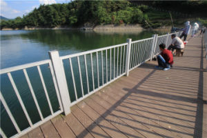 Pontoon Wood Decking Lumber Outdoor Use WPC Flooring Timber pictures & photos