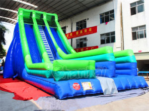 Channal Two Lanes Giant Inflatable Slide for Adults and Kids pictures & photos