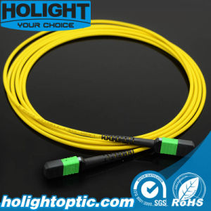 MPO Sm Fiber Optic Patch Cord pictures & photos