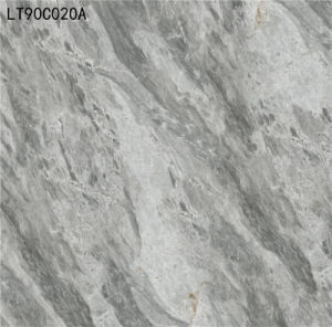 High Quality Foam Look Building Materials Floor Tiles in China (LT90C020A) pictures & photos