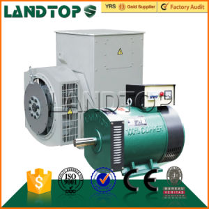 LANDTOP international standard Dynamo/Alternator/Generator pictures & photos