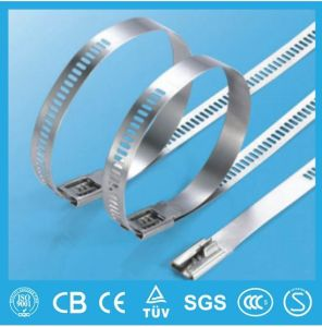 Multi Barb Lock Ladder Type Uncoated Stainless Steel Cable Tie pictures & photos
