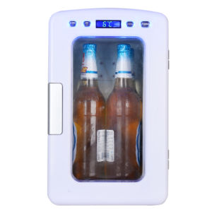 Fashionable Mini Fridge 10liter, DC12V, AC100-240V with Cooling and Warming Function pictures & photos