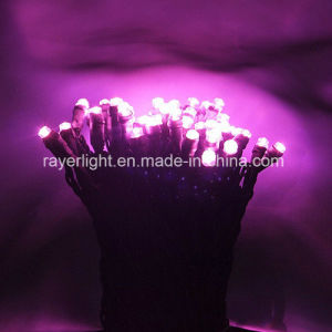 Waterproof LED Fairy LED Christmas String Light White LED pictures & photos