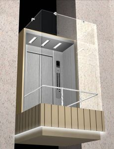 Beautiful Low Price Passenger Home Lift Elevator with Capacity 400kg 5 Person for Residential Building pictures & photos