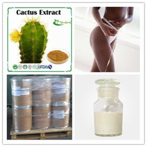 Hoodia Cacus Weight Loss Steroids Natural Plant Extract CAS 145723-550 pictures & photos