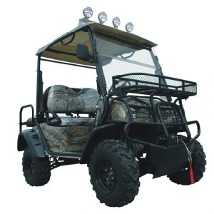 High Quality 4X4 Electric UTV with Low Price pictures & photos