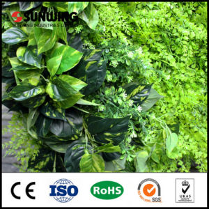 Sunwing Cheap Vertical Green Wall for Office Decoration pictures & photos