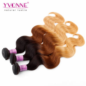 Ombre Color Peruvian Remy Hair Extension 100% Human Hair pictures & photos