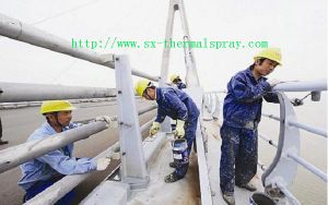 Professional Spraying Machine From China pictures & photos