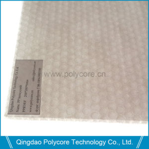 Waterproof Light Weight Polypropylene Honeycomb pictures & photos