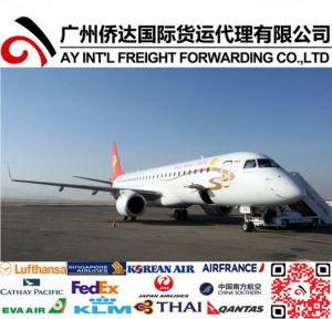 Professional Air Shipping to Ulan Bator