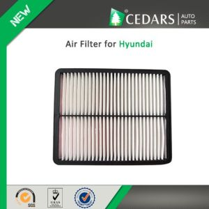 China Auto Parts Quality Supplier Air Filter for Hyundai pictures & photos