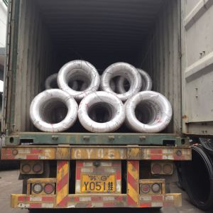 Spheeroidized Annealed Steel Wire SAE1018 with Phosphate Coated pictures & photos