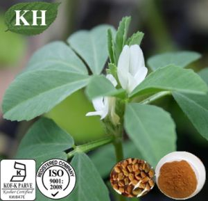 Factory Natural Fenugreek Seed Extract Fenugreek Saponins pictures & photos