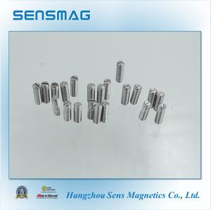 14 Years Experienced in Permanent AlNiCo Magnet, Pickup Magnet pictures & photos