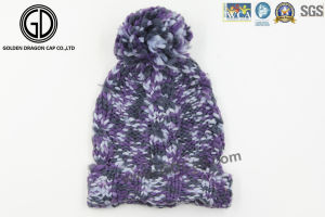 Wholesale Cheap Acrylic Custom Jacquard Knitted Warm Winter Beanie pictures & photos