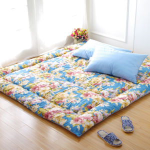 Print Floor Mattress Pad pictures & photos