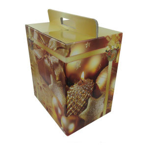 Christmas Gift Paper Boxes (FT503) pictures & photos