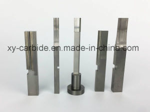 Precision Tools Carbide Die Cutting Punch pictures & photos
