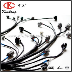 China Manufacturing Electrical GM Ls1, Ls2, Ls3 Engine Wiring Harness pictures & photos