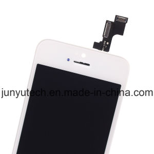 Mobile Phone LCD Touch Screen for iPhone 5s Free DHL pictures & photos