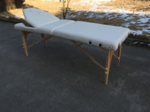 Portalbe Massage Table with Adjustable Backrest and Full Accessories pictures & photos
