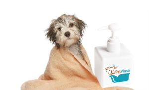 Herbfun Coat Brightening Dog Shampoo for All Kinds of Dogs OEM & ODM pictures & photos