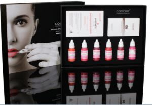 Goochie Best Tattoo Ink Permanent Makeup Pigment Kit for Lip pictures & photos