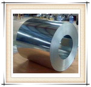 Factory Price Hot Dipped Galvanized Steel Coil Come From Our Own Factory pictures & photos
