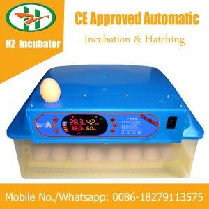 Solar Powered Automatic Mini 48 Eggs Incubator Small Hatcher Machine pictures & photos