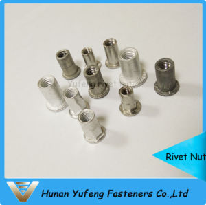 Aluminum/Stainless Steel/Carbon Steel Rivet Nut pictures & photos