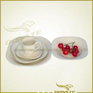 Printed Ceramic Dinner Set/ China Dinner Set/ Stoneware Dinner Set