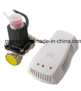 High Good Quality Gas Detector Alarm with Valve pictures & photos