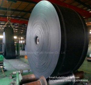Cold Resistant Conveyor Belt pictures & photos