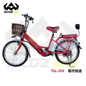 Lithium E Electric Bike with Basket