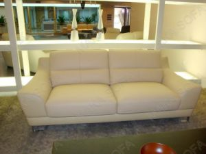 Leisure Leather Sofa (MT-15)