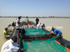 Kenya Farmers Lake Victoria Culture Fish Cage pictures & photos