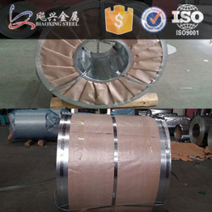 High Quality Galvanized Steel Strips & Coils pictures & photos