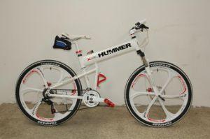 New Design OPC Wheel Folding Mountain Bike (FP-MTB-A058) pictures & photos