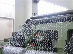 Hexagonal Wire Netting Anping Factory pictures & photos